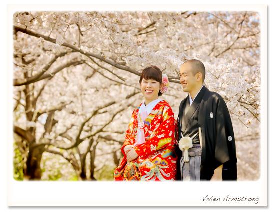 和装で桜と前撮り