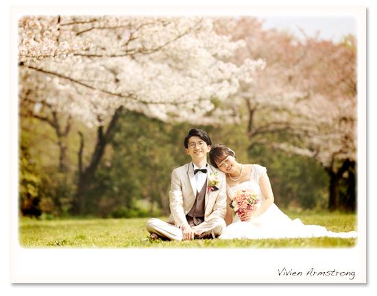 芝生の上で桜をバックに桜ロケーション