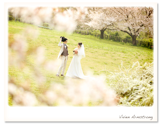 洋装で桜と一緒にフォトウェディング