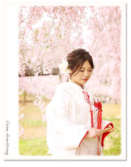 白無垢和装で枝垂れ桜と前撮りフォト