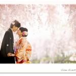桜に囲まれて和装前撮りフォトウェディング