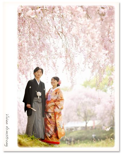 和装色打掛で桜の前撮りロケーション