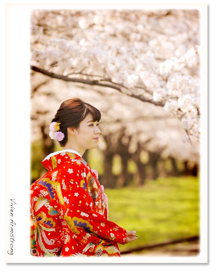 桜の木の下でしっとりフォトウェディング