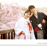小物を使って桜フォトロケーション撮影