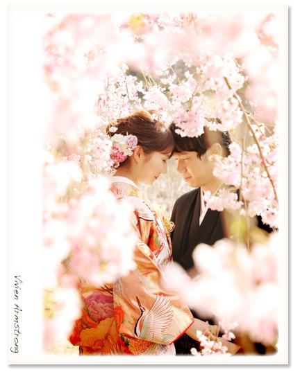 枝垂れ桜に包まれて桜ロケーションフォト
