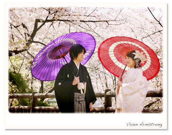 和装で番傘と一緒に桜ロケーション