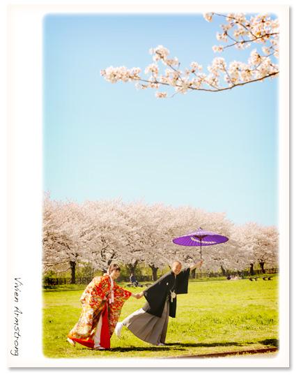 満開の桜と和装で桜ロケーション