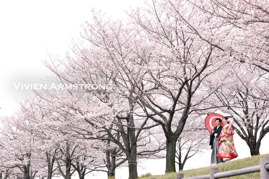 桜並木の前で前撮り撮影