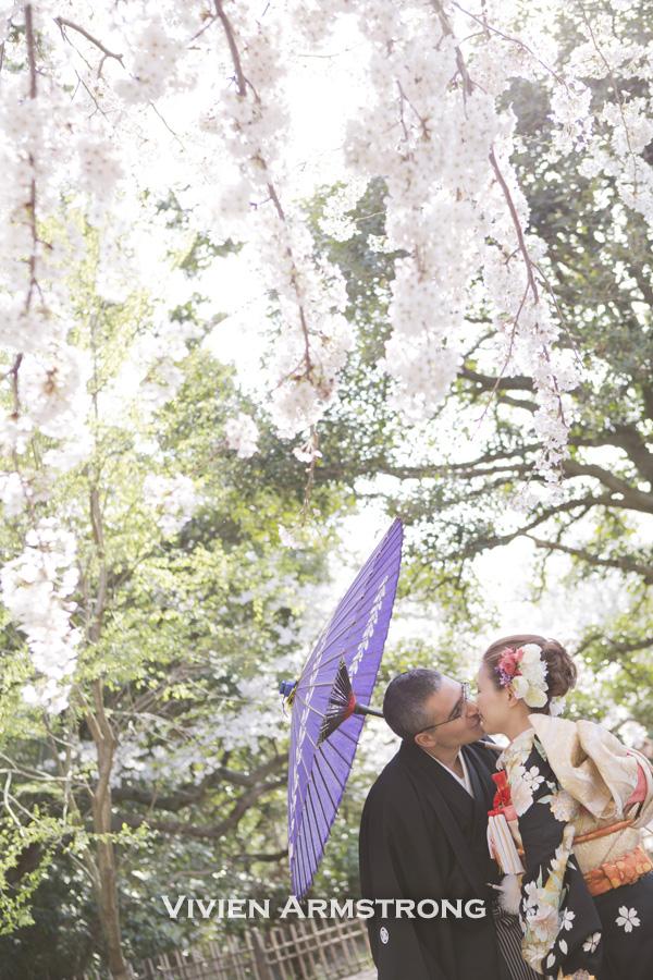 桜の木の下で和装ウェディング前撮り撮影