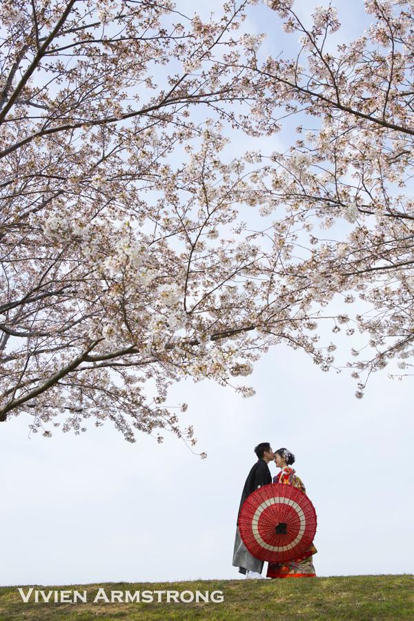 桜と青空の下でロケーション前撮り撮影