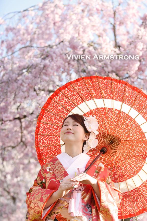 和装色打掛と和傘の桜ロケーション前撮り