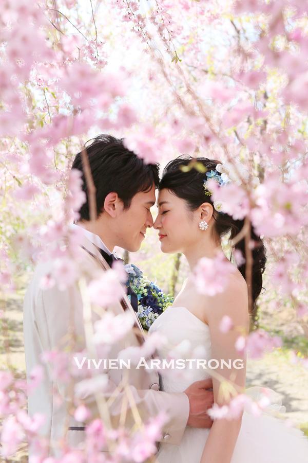 満開の桜の中でドレスで前撮り