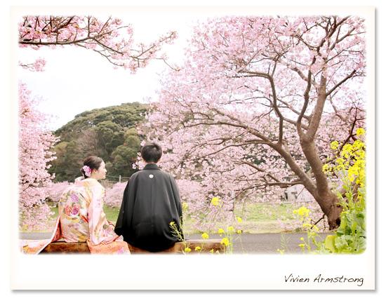 満開の河津桜を眺めながら旅行気分の桜ロケーション