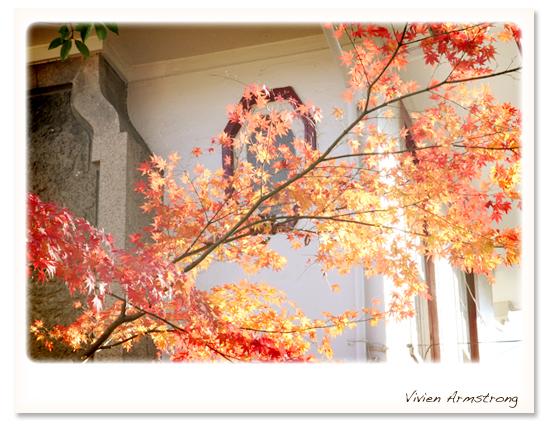 西洋館の真っ赤な紅葉