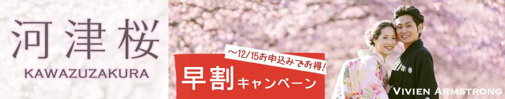kawazuzakurabnr01
