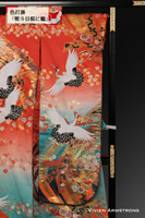 吉祥柄の重ね熨斗目をとりどりの桜で飾り瑞鳥鶴が舞い飛ぶ、赤と緑のグラデーションになった色打掛