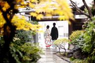 東京の撮影できる日本庭園で、紅葉の季節にウェディングフォトを撮る和装の新郎と色打掛を着た新婦の後ろ姿