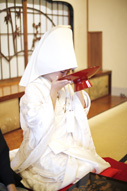 東京のウェディングフォトが撮影できる料亭で、三々九度をする綿帽子に白無垢姿の新婦のドキュメンタリースナップ