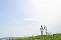 芝のある高台から、海を見つめるタキシードの新郎とウェディングドレスの新婦の後ろ姿の、ウェディングフォト