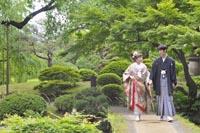 東京の日本庭園で、新緑の季節に和装の前撮りをする、新郎と色打掛を着た新婦のお散歩風なカジュアルな写真