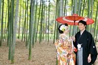 東京の竹林のある日本庭園で、赤い和傘を持つ新郎とカラフルな色打掛を着る新婦の、和装婚礼前撮り写真