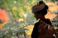 和装の婚礼前撮りで紅葉の日本庭園でたたずむ角隠しと黒引き振袖を着た新婦のノスタルジーな後ろ姿