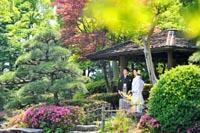 東京の東屋のある日本庭園で、新緑の季節に和装の婚礼前撮り写真を撮る紋付き袴の新郎と白無垢姿の新婦
