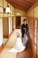 縁側のあるお茶室で和装の婚礼前撮りをする新郎と綿帽子と白無垢姿の新婦の俯瞰構図の写真