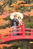 東京の日本庭園で、紅葉の季節に真っ赤な橋の上で、和傘を持つ和装の新郎と赤い色打掛を着た新婦の秋のフォトウェディング