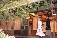 中庭のあるお茶室の縁側に立つ新郎と白無垢姿の新婦の和装の婚礼前撮り写真