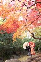 東京の紅葉がきれいな日本庭園で、秋に和装の前撮りをする、和傘をもつ新郎と新婦