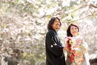 横浜鎌倉三渓園 日本庭園で季節の木々とともに和装前撮り