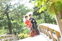 横浜鎌倉三渓園 日本庭園の橋の上で和傘をさして色打掛と紋付袴を着て和装前撮り