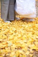 紅葉シーズン落ち葉の絨毯の上で和装前撮り