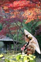 横浜三渓園 紅葉シーズンの日本庭園で白い和傘を使っての和装前撮り