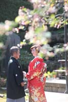 横浜鎌倉三渓園 光きらめく日本庭園で季節の木々をいかして思い出に残るロケーション和装前撮り