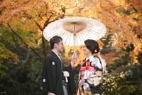 黃葉シーズンの古河庭園ので黒引き振袖を着てロケーション前撮り