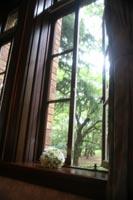 洋館の窓辺で思い出に残るフォトウェディング