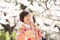 光をうけて輝く優しい桜の下で色打掛を着て桜ロケーション和装前撮り