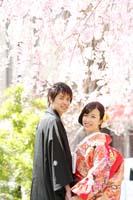 光を受けて輝くしだれ桜の桜ロケーションの下で色打掛を着て寄り添い合う新郎新婦の和装前撮り