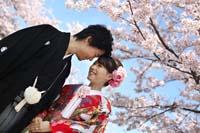 満開の桜と青空の下で色打掛を着ておでこを寄せ合う幸せな新郎新婦の桜ロケーション和装前撮り