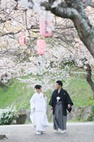 白無垢で桜の下を歩く新郎新婦のロケーション前撮り