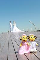横浜大さん橋で思い出のぬいぐるみとおそろいのキュートなフォトウェディング