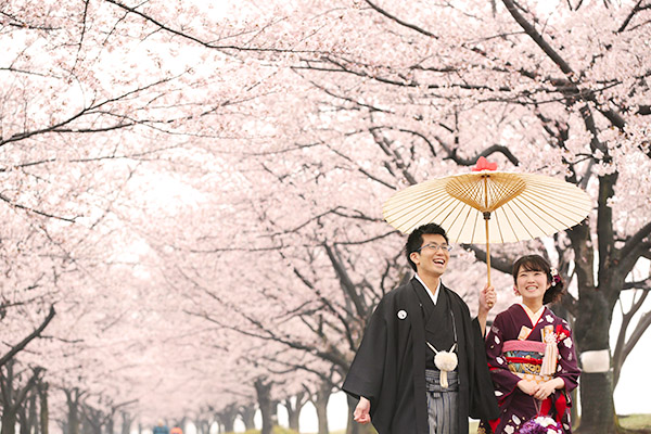 東京の桜ロケーション撮影
