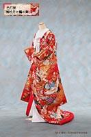 吉祥柄の梅と富貴を意味する牡丹が散らされた中に瑞鳥の鶴が飛び交う、赤地に金糸の華やかな色打掛