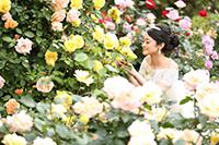 都内洋館の庭園でバラに囲まれて撮影ができるフォトウェディングロケーション