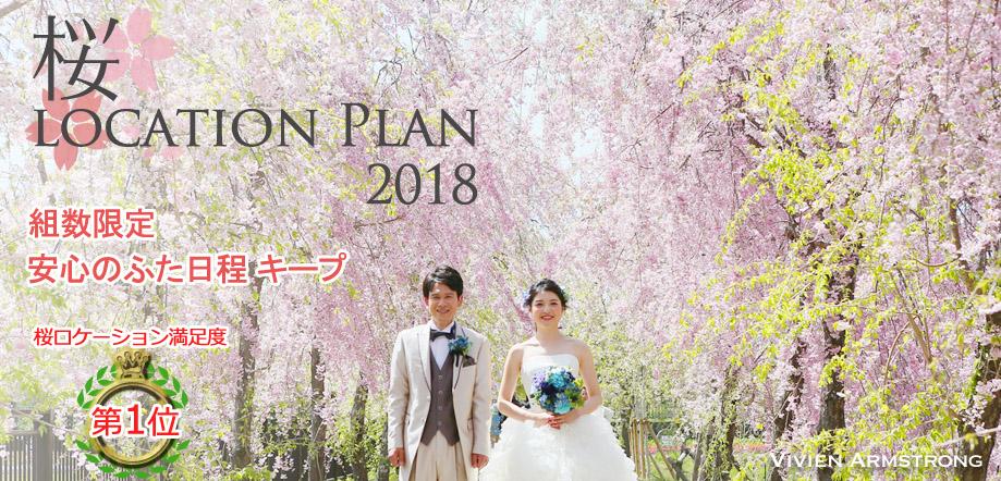 桜ロケーション撮影 ウェディングドレス