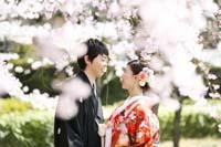 和装で桜ロケーションフォト
