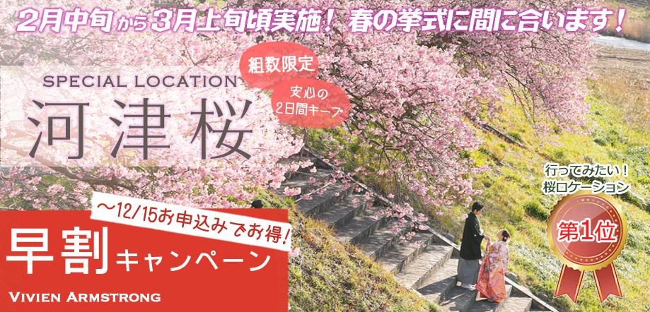 河津桜でフォトウェディング