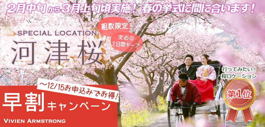 河津桜で桜ロケーションフォト